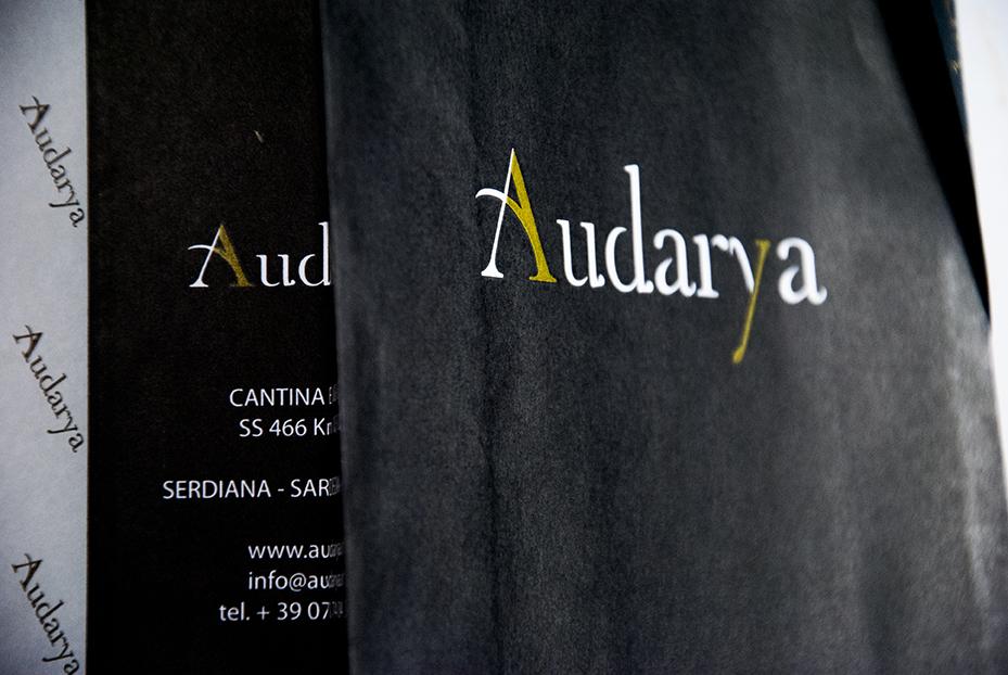 audarya_18web