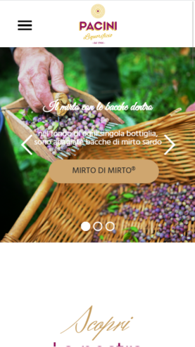 portfolio-web-Pacini